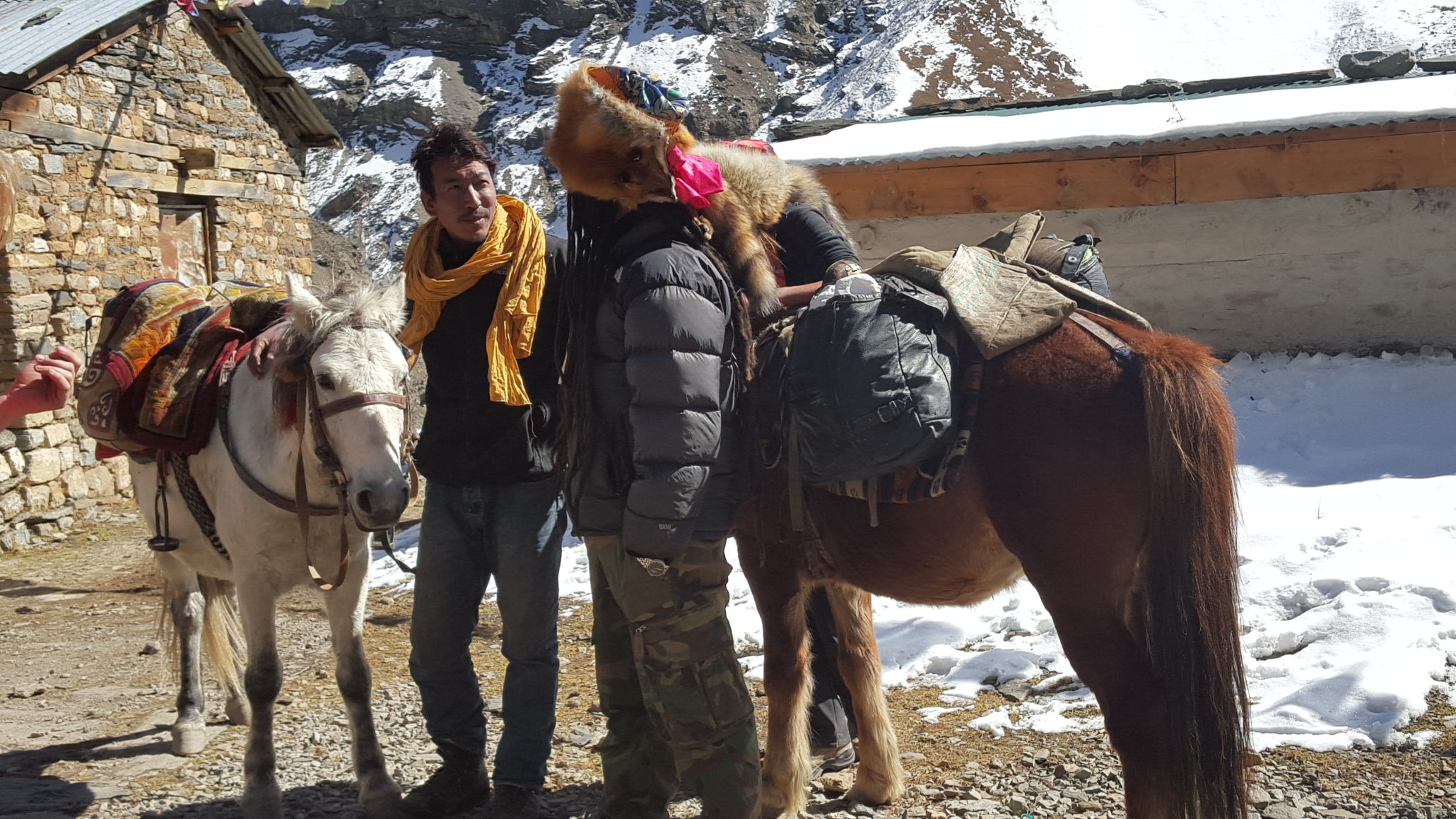2 nepali people with their horses and behind them are the himalayas moutains