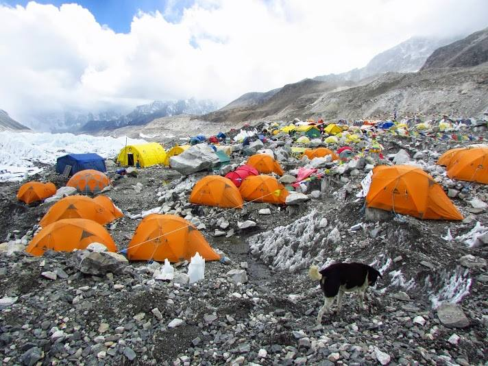 Tents in an Everest Base Camp